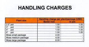Phí Handling charge là gì?